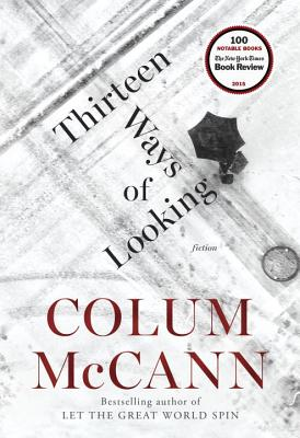 Thirteen Ways of Looking: Fiction